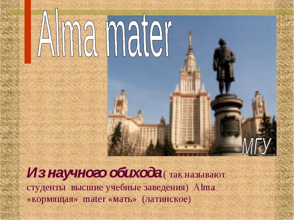 Из научного обихода ( так называют студенты высшие учебные заведения) Alma «к...