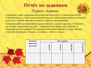 Отчёт по заданиям Первое задание. Выясните, какие древесные цветковые растени