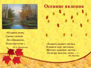 Осенние явления «Поздняя осень, Грачи улетели Лес обнажился, Поля опустели ».