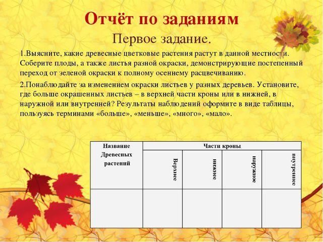 Отчёт по заданиям Первое задание. Выясните, какие древесные цветковые растени...