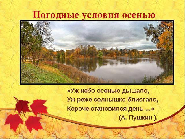 Погодные условия осенью «Уж небо осенью дышало, Уж реже солнышко блистало, Ко...