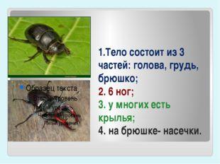 1.Тело состоит из 3 частей: голова, грудь, брюшко; 2. 6 ног; 3. у многих есть