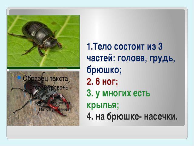 1.Тело состоит из 3 частей: голова, грудь, брюшко; 2. 6 ног; 3. у многих есть...