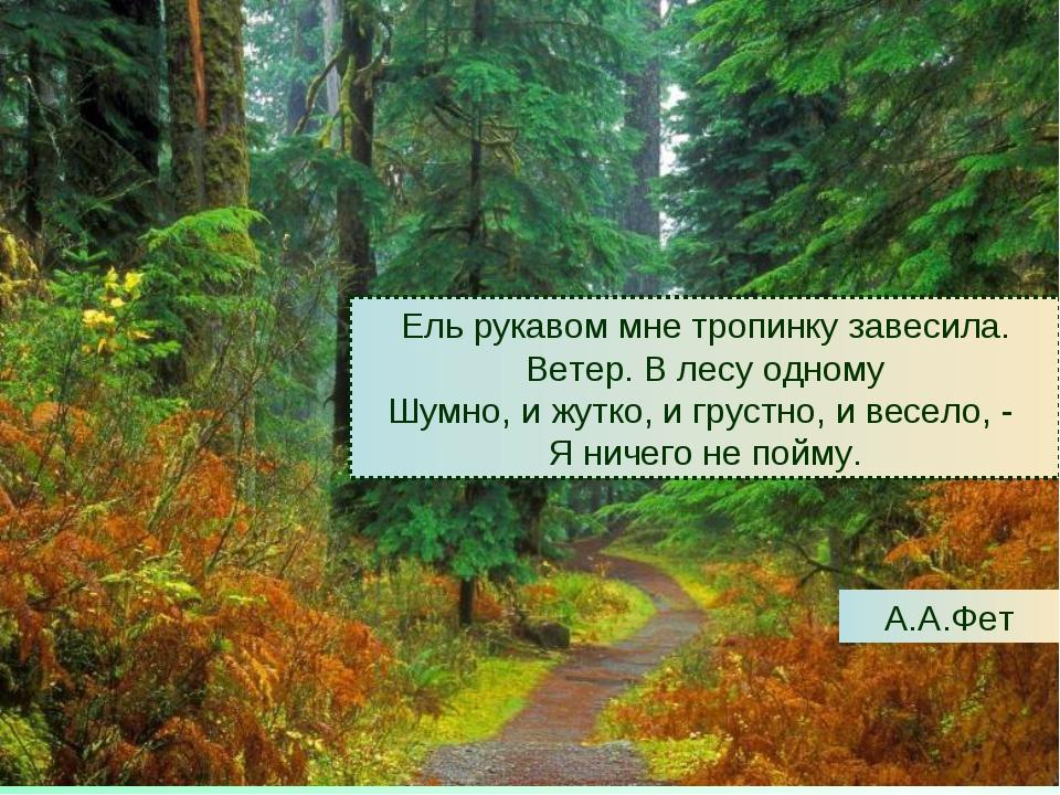 Ель рукавом мне тропинку завесила. Ветер. В лесу одному Шумно, и жутко, и гру...
