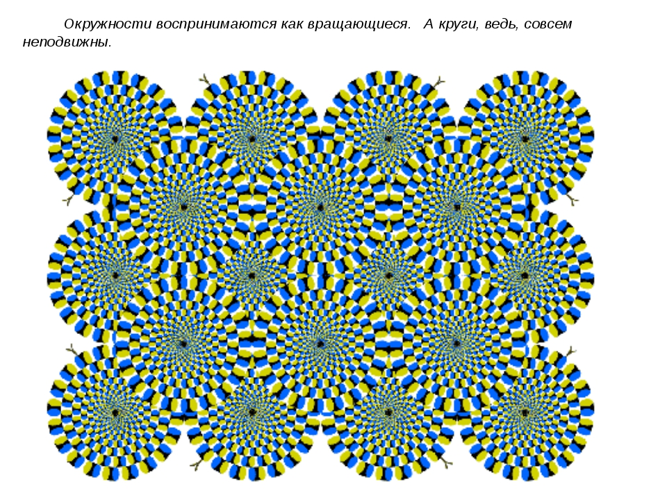 Окружности воспринимаются как вращающиеся. А круги, ведь, совсем неподвижны.