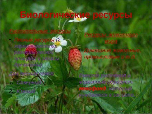 Биологические ресурсы Растительные ресурсы Лесные ресурсы (2 характеристики:...