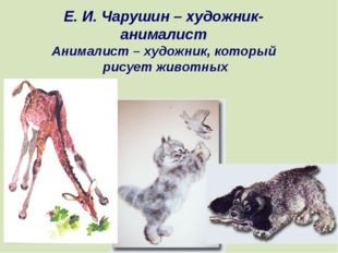 Е. И. Чарушин – художник- анималист Анималист – художник, который рисует живо
