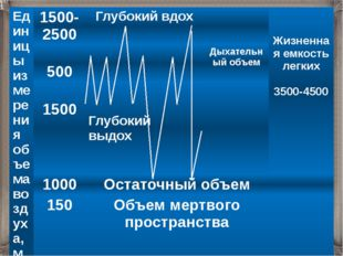 Единицы измерения объема воздуха, мл 1500- 2500 Глубокий вдох Жизненная емкос
