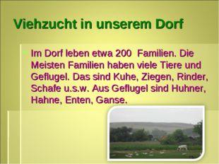 Viеhzucht in unsеrеm Dorf Im Dorf leben etwa 200 Familien. Die Meisten Famili