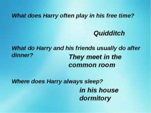 What does Harry often play in his free time? Quidditch What do Harry and his