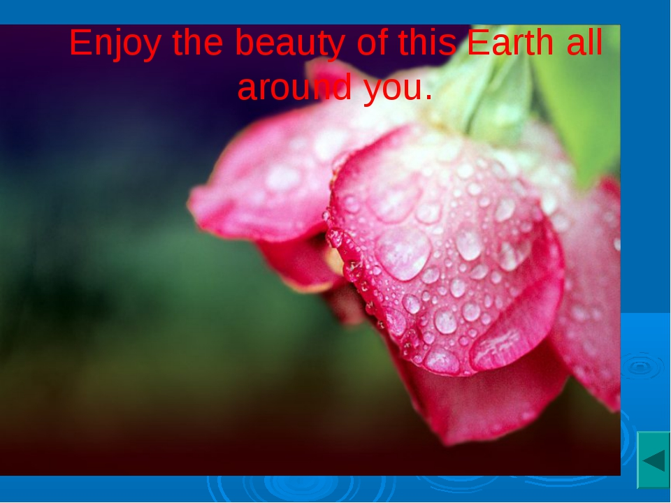 Enjoy the beauty of this Earth all around you.
