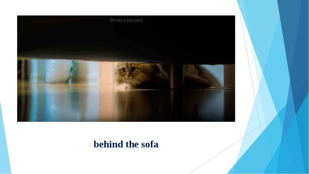 behind the sofa