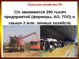 Сельское хозяйство РК С/х занимаются 200 тысяч предприятий (фермеры, АО, ТОО)