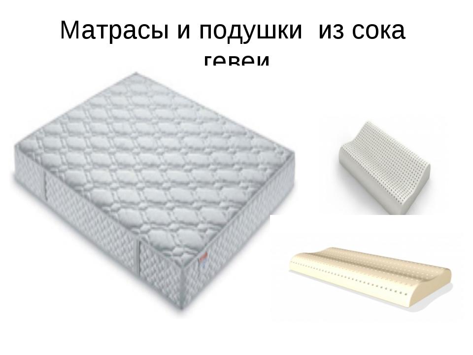 Матрасы и подушки из сока гевеи