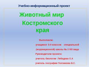 Учебно-информационный проект Выполнили: учащиеся 5-9 классов специальной (кор