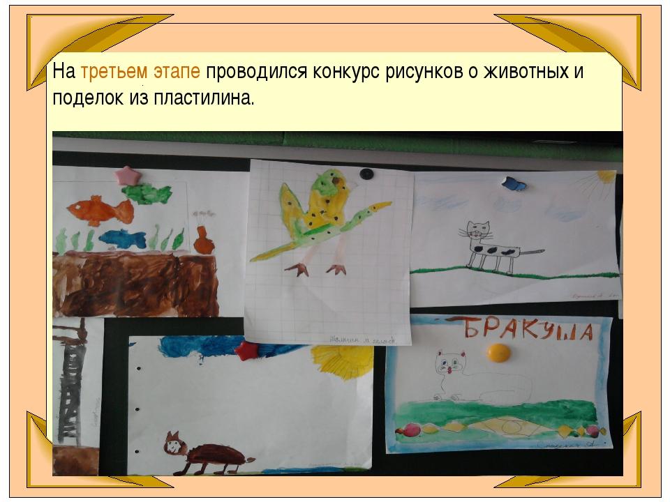 На третьем этапе проводился конкурс рисунков о животных и поделок из пластили...