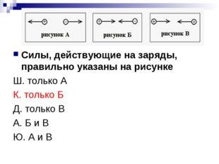 Силы, действующие на заряды, правильно указаны на рисунке Ш. только А К. толь