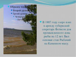 В 1887 году озеро взял в аренду губернский секретарь Фетисов для промышленног