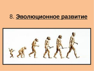 8. Эволюционное развитие