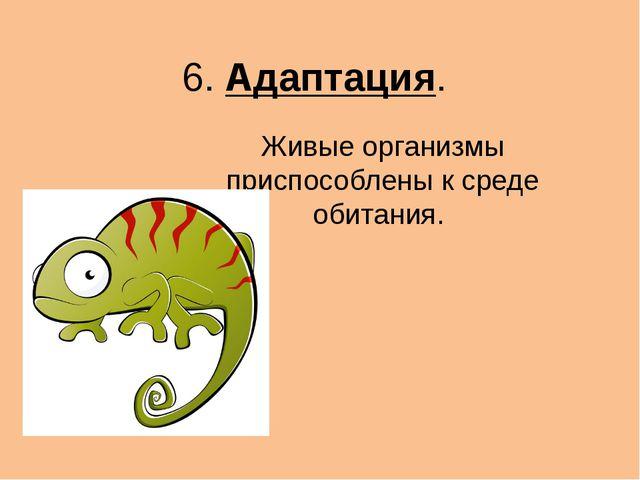 6. Адаптация. Живые организмы приспособлены к среде обитания.