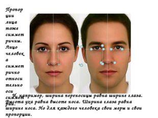 Пропорции лица тоже симметричны. Лицо человека симметрично относительно оси с