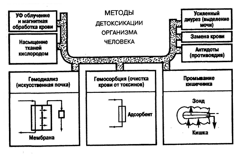 C:\Documents and Settings\Елена Васильевна\Рабочий стол\3.jpg