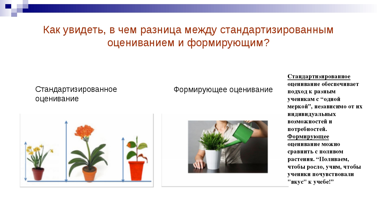 Как увидеть, в чем разница между стандартизированным оцениванием и формирующи...