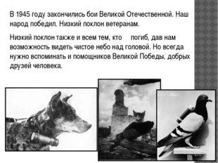 В 1945 году закончились бои Великой Отечественной. Наш народ победил. Низкий