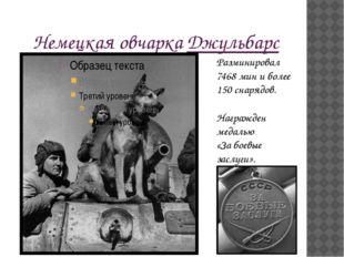 Немецкая овчарка Джульбарс Награжден медалью «За боевые заслуги». Разминирова