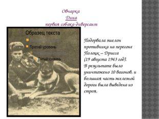 Овчарка Дина первая собака-диверсант Подорвала эшелон противника на перегоне