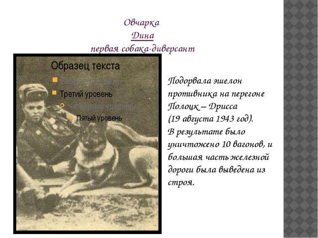 Овчарка Дина первая собака-диверсант Подорвала эшелон противника на перегоне...