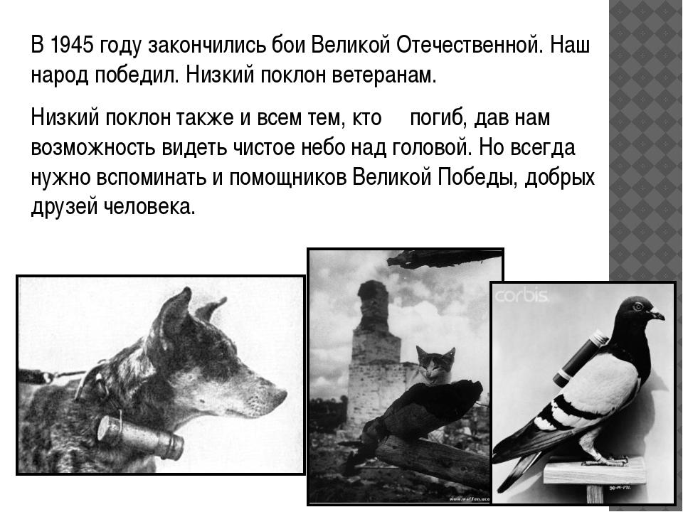 В 1945 году закончились бои Великой Отечественной. Наш народ победил. Низкий...
