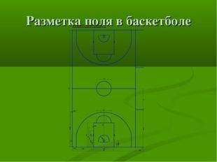 Разметка поля в баскетболе