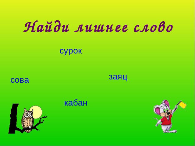 Найди лишнее слово сурок сова заяц кабан
