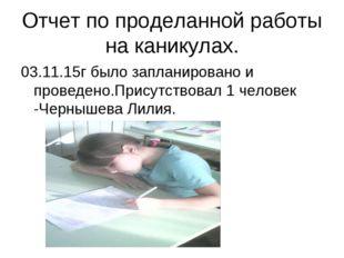 Отчет по проделанной работы на каникулах. 03.11.15г было запланировано и пров