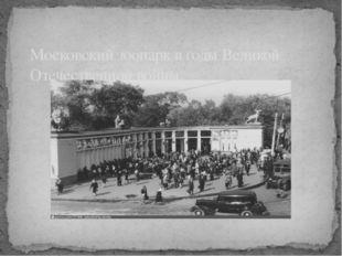 Московский зоопарк в годы Великой Отечественной войны.