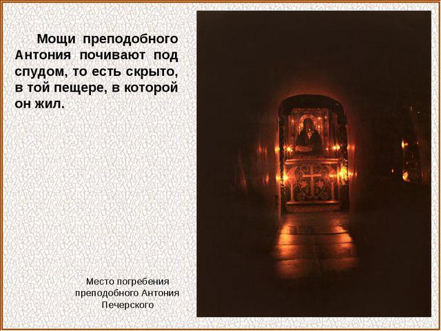 Мощи преподобного Антония почивают под спудом, то есть скрыто, в той пещере,...