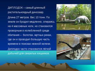 ДИПЛОДОК – самый длинный растительноядный динозавр. Длина 27 метров. Вес 10