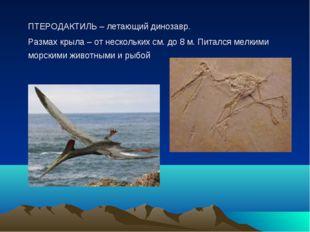ПТЕРОДАКТИЛЬ – летающий динозавр. Размах крыла – от нескольких см. до 8 м.