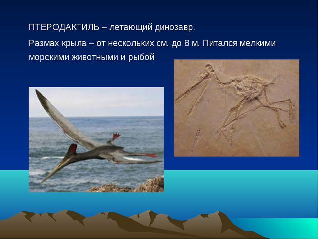 ПТЕРОДАКТИЛЬ – летающий динозавр. Размах крыла – от нескольких см. до 8 м....