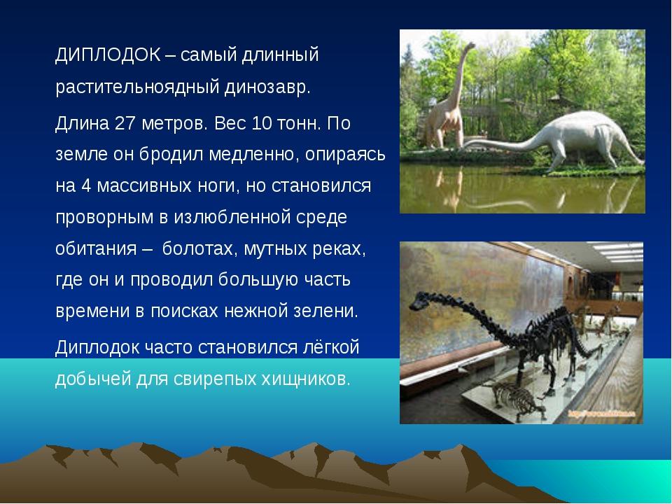 ДИПЛОДОК – самый длинный растительноядный динозавр. Длина 27 метров. Вес 10...