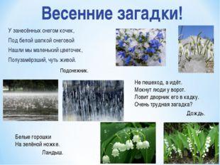 У занесённых снегом кочек, Под белой шапкой снеговой Нашли мы маленький цвето