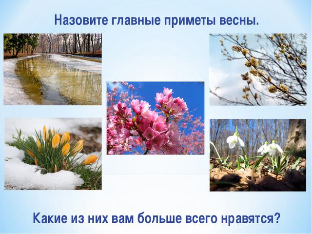 Назовите главные приметы весны. Какие из них вам больше всего нравятся?