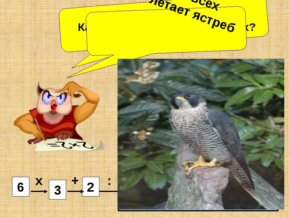 4 5 2 3 6 Какая птица летает выше всех? Ястреб – 4 Сокол – 3 Орёл - 7 х + :...