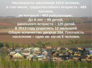 Численность населения 1014 человек, в том числе, трудоспособного возраста -