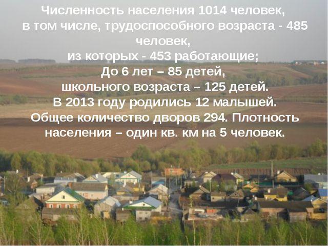 Численность населения 1014 человек, в том числе, трудоспособного возраста -...
