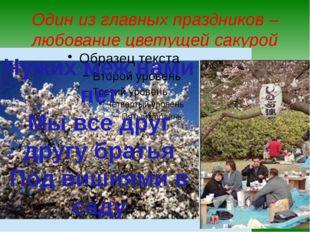 Один из главных праздников – любование цветущей сакурой Чужих меж нами нет Мы