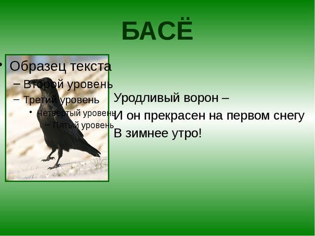 БАСЁ Уродливый ворон – И он прекрасен на первом снегу В зимнее утро!