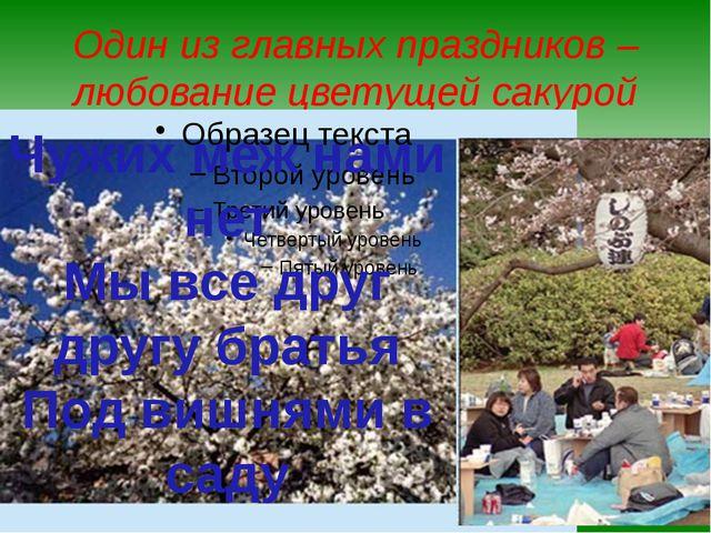 Один из главных праздников – любование цветущей сакурой Чужих меж нами нет Мы...