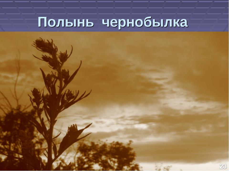 Полынь чернобылка